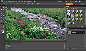 photoshop Elements Studio Workshop